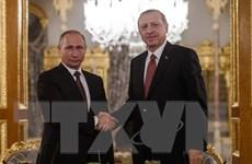 Tổng thống Nga phê chuẩn Hiệp định Dòng chảy Thổ Nhĩ Kỳ