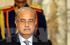 Kế hoạch cải tổ nội các của Ai Cập được lùi tới ngày 14/2