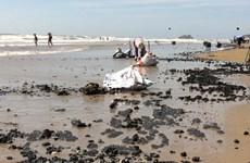 Quảng Nam: Xuất hiện dầu vón cục dạt vào dọc 7km bờ biển