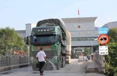 Việt Nam chủ động phòng chống dịch cúm A xâm nhập từ Trung Quốc
