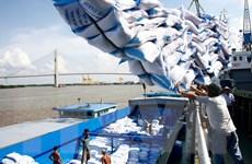 Sớm tháo gỡ bất cập trong hoạt động kinh doanh gạo xuất khẩu