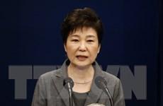 Phản ứng trái chiều về việc không gia hạn điều tra bà Park Geun-hye