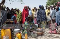 Nhật Bản viện trợ 26 triệu USD cho 6 quốc gia đối phó nạn đói