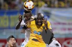 VFF công bố kỷ luật những hành vi vi phạm tại vòng 10 V-League
