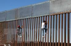 Số người Mexico bị trục xuất khỏi Mỹ đã giảm mạnh