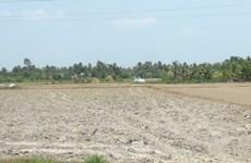 Biến đổi khí hậu - Biến thách thức thành cơ hội cho nông nghiệp