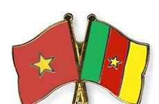 Tăng cường quan hệ hợp tác giữa Việt Nam và Cameroon