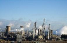 Scotland: Sơ tán khẩn cấp do nghi rò rỉ khí tại nhà máy lọc dầu