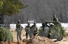 Các nước Baltic và Ba Lan họp bàn về hợp tác an ninh khu vực