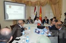 Hội thảo về cơ hội, thách thức và triển vọng hợp tác Việt Nam-Ai Cập