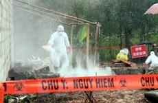 Phát hiện sự biến đổi từ độc lực thấp sang cao của chủng virus H7N9