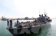 Khoảng 2.300 người tị nạn được giải cứu ngoài khơi Libya