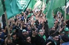 Phong trào Hamas tuyên bố không liên hệ với al-Qaeda và IS