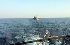 Bình Định khẩn trương tìm kiếm, cứu hộ tàu cá bị trôi dạt