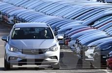Volkswagen tiếp tục đối mặt với vụ kiện mới tại Hà Lan