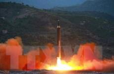 Tổng thống Hàn Quốc triệu tập cuộc họp khẩn Hội đồng an ninh quốc gia