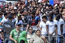 """EU tìm cách """"gỡ rối"""" vấn đề khủng hoảng di cư cho Italy"""