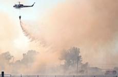 Mỹ ban bố tình trạng khẩn cấp do cháy rừng tại California