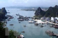 Sẽ tiến hành cưỡng chế việc xây dựng trái phép trên vịnh Bái Tử Long