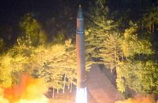Nhật Bản và Mỹ tăng cường hành động đối phó với Triều Tiên