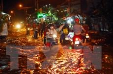 Thành phố Hồ Chí Minh xây hồ điều tiết để giảm ngập do mưa