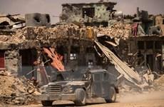 IS sử dụng hơn 4.000 gia đình làm lá chắn sống tại tỉnh Anba