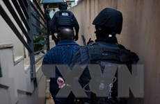 Australia, UAE, Hà Lan phối hợp triệt phá đường dây ma túy quy mô lớn