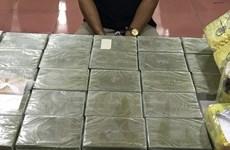 Truy tố hai bị can trong vụ giấu 40 bánh heroin trong nắp capô xe ôtô