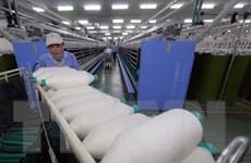 Vinatex và PVN bàn giải pháp tiêu thụ sản phẩm Nhà máy Xơ sợi Đình Vũ