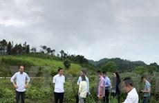 Banyan Tree khảo sát xây khách sạn siêu sang tại Cao nguyên Đồng Văn