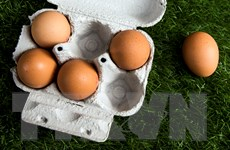 """Italy thu giữ sản phẩm của công ty Pháp liên quan vụ trứng gà """"bẩn"""""""