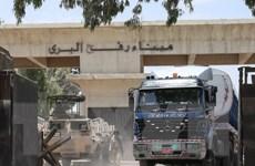 Ai Cập mở cửa khẩu Rafah cho người hành hương Palestine