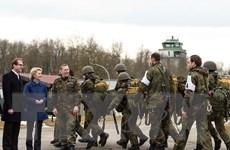 Đức điều tra các cáo buộc về chủ nghĩa cực đoan trong quân đội