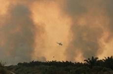 Indonesia huy động hơn 230 máy bay thả bom mưa chống cháy rừng