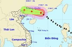 Bão số 7 đã đi vào khu vực phía Nam tỉnh Quảng Đông của Trung Quốc