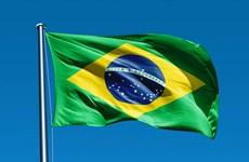 Điện mừng kỷ niệm Quốc khánh lần thứ 195 Cộng hòa Liên bang Brazil