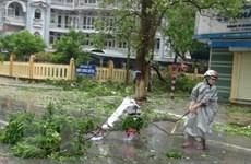 Quảng Bình huy động các nguồn lực khôi phục trường lớp sau bão số 10
