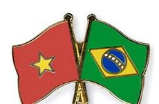 Ra mắt Nhóm nghị sỹ hữu nghị Brazil-Việt Nam nhiệm kỳ 2017-2019
