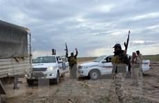 Iraq tấn công thị trấn Hawija do lực lượng IS kiểm soát