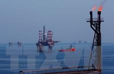 Yêu cầu xử lý vi phạm pháp luật trong kinh doanh khí dầu mỏ hóa lỏng