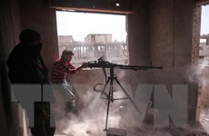 Lầu Năm Góc phủ nhận cung cấp vũ khí cho tổ chức IS
