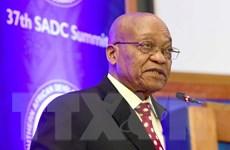 """Tòa án Tối cao Nam Phi """"bật đèn xanh"""" cho việc truy tố Tổng thống Zuma"""
