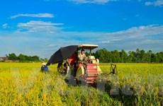Thúc đẩy phát triển nông nghiệp bền vững, thích ứng biến đổi khí hậu