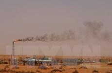 Saudi Arabia lên kế hoạch giảm xuất khẩu dầu thô tháng 12