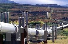 Giá dầu thị trường thế giới ở mức cao nhất trong hai năm qua