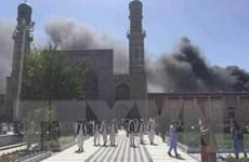 Kinh tế Ai Cập không chịu ảnh hưởng tiêu cực bởi vụ tấn công đền thờ