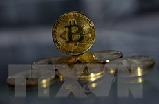 Bitcoin thổi bùng quan ngại ''bong bóng'' trên thị trường tiền ảo