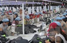 Kim ngạch xuất khẩu ngành dệt may năm 2017 đạt 31 tỷ USD