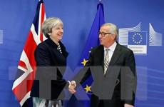 Vấn đề Brexit: Đàm phán xuyên đêm sau dấu hiệu tiến triển