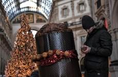 Đến Italy đón Giáng sinh với chiếc bánh panettone lớn nhất thế giới
